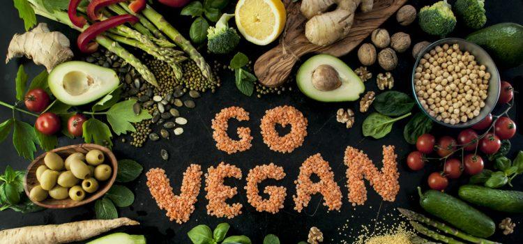 pro-veganov